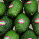 Avocados, And Nothing Else, Are The Reason We Can't Afford Homes